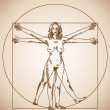 Stock Vector: Vitruvian woman