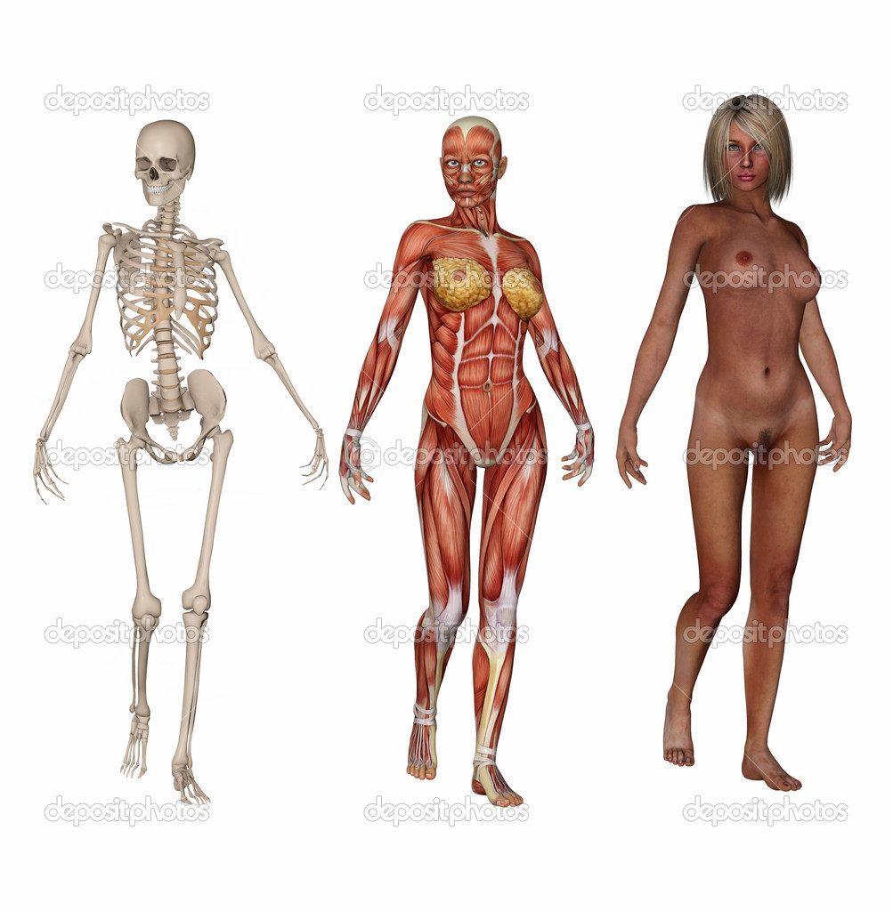 Woman Skeleton Nude 90