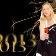 New Year 2013 — Stock Photo #13738684