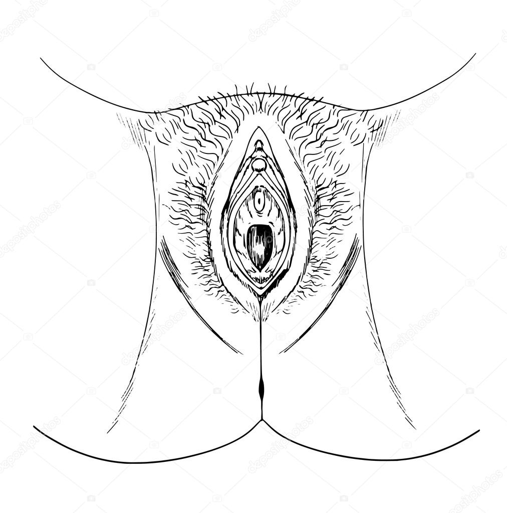 narisovannaya-vagina