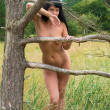 Nude woman posing near an old dry tree — Stock Photo #29658759