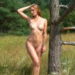 Nude woman posing near an old dry tree — Stock Photo #29658773